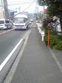 望地の歩道.jpg